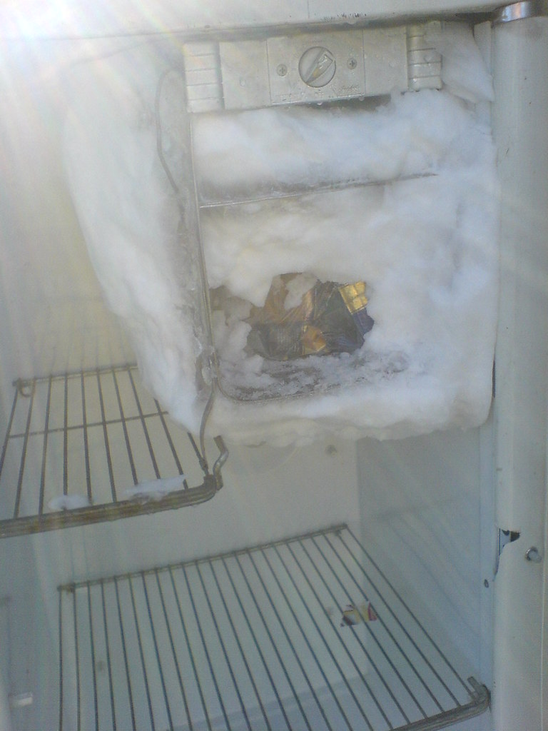 Defrosting the Garage Fridge