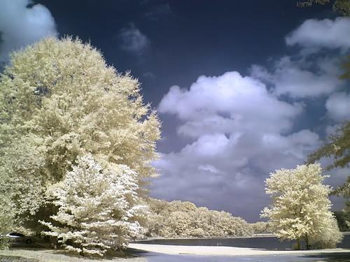 Neela Sky images 55