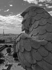 Uccello di Pietra (aguti76) Tags: paris gargoyles viaggio vacanza parigi