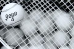 tennis (Rachel Kern) Tags: california blackandwhite bw white black sports 4 tennis penn tennisball northern penn4 rachelkern
