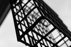 birdfeeder cage