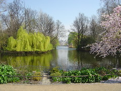 St James Park01 (sjnewton) Tags: world 2005 park pink lake green london water yellow james sony willow april scenes stjames dscp12