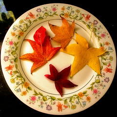 The Low Carb Autumn Leaves Diet - by Auntie K
