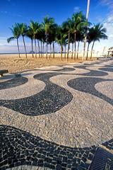 Copa Classic (laszlo-photo) Tags: brazil beach rio brasil riodejaneiro palms copacabana palmtrees tropics