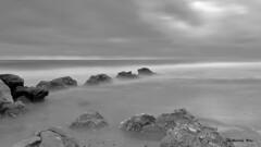 LLARGA_08-12-16_3 (manel_bru) Tags: 2016 albades llarga natura mar platja valencia pujol bn