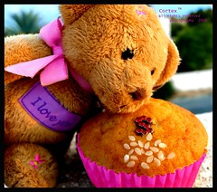 Teddy Love (Cotex) Tags: birthday bear cute pie teddy s happybirthday cortex wawa buhanad
