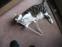 meatwad fighting with a hanger.