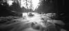 (facenorth) Tags: duchesnayfalls holga120wpc ilfordpanf50 mediumformat 120film lomography lomo pinhole pinholecamera pinholephotography plasticcamera negative selfdeveloped scan kodakhc110 waterfall longexposure northbay ontario blackandwhite bw