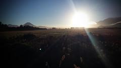 Hard Sun (stefans_box) Tags: sunrise sunup sonnenaufgang tongariro nationalpark ruapehu village manawatu wanganui nordinsel northisland neuseeland newzealand nz vulkan volcano morgenstimmung morningmood