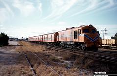 3434 X1005 Suburban Passenger Welshpool 9 February 1983 (RailWA) Tags: railwaphilmelling westrail 1983