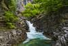 Primavera en Añisclo (3) (sostingut) Tags: pirineos d750 nikon cascada waterfall río verde bosque cañón valle montaña roca paisaje primavera deshielo