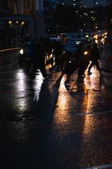 (Wellington Streets) Tags: wellington wellingtonnz wgtn nz newzealand fujifilm fujifilmxseries fujifilmnz fujifilmstreet xseries xf35 xt2 street streetphotography streetphotographer streets