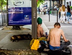"""Street - """"Don't be afraid to be owner"""" (François Escriva) Tags: paris france street streetphotography candid people men homeless colors stop bus dog blue green yellow photo rue"""