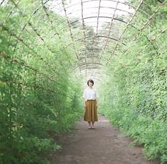 緑の季節 (koha9) Tags: hasselblad realaace real
