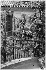 ([JBR]) Tags: noir blanc mono monochrome grey gris black white garden jarin maison village rue caille street pueblo negro blanco