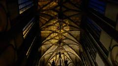 Church of Our Lady of the Snows (Kostel Panny Marie Sněžné). Prague, Czech Republic. May 25, 2018 (Aris Jansons) Tags: prague praha czech česko czechia city capital 2018 ceiling church indoor interior
