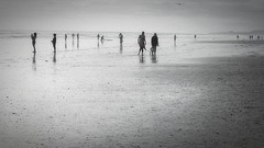 Diversity (Christina's World Off and On) Tags: sea seascape sandiego scenic artistic beach blackandwhite monochrome mood california candid digitalart dramatic delmar hat impressionistic landscape light man minimalism nostalgia outdoors ocean people sky textures unitedstates usa vintage view woman walking youngadult tides serene seagull seaside coastal coast