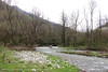 Gradac river #1 (srkirad) Tags: travel walk hiking trekking serbia srbija river gradac valjevo forest mountains spring cloudy pebbles grass trees