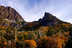 Autumn hiking in Tasmania (tristanrayner.com) Tags: australia cradlemountain tasmania