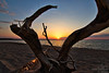 Driftwood (Winglet Photography) Tags: sunset dusk evening twilight beach lake lakesuperior michigan up upperpeninsula autrain greatlakes wingletphotography georgewidener stockphoto earth canon 7d georgerwidener nature upnorth scenic scenery driftwood