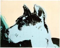 Postcrossing US-5343443 (booboo_babies) Tags: dog andywarhol art painting 1976 postcrossing