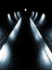 The Dark Path (Steve Taylor (Photography)) Tags: art digital light window black blue monocolor monocolour monochrome monotone white eerie spooky strange odd newzealand nz southisland canterbury christchurch city curve lights spectrum tunnel ymca