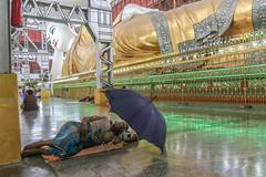 Yangon, Myanmar (gstads) Tags: yangon rangoon myanmar burma burmese birmanie buddha buddhist recline reclining sleep sleeping umbrella gold temple asia asian