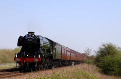 60103 Flying Scotsman- Saxilby (Andrew Edkins) Tags: thegreatbritainxi geotagged canon railwayphotography 60103 flyingscotsman saxilby levelcrossing travel trip lincolnshire england uksteam mainlinesteam april 2018 spring sun
