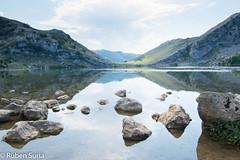 Lagos de Covadonga (r_suria) Tags: 1116 asturias españa granangular lagosdecovadonga nikon3200 paisaje tokina1116 vacaciones