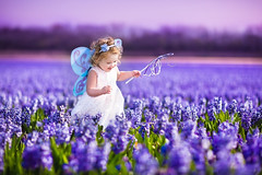 Adorable toddler girl in fairy costume in a flower field (colourfulcreation05) Tags: adorable angel baby background beautiful beauty butterfly charm child childhood costume crown curly cute daffodil dress dutch easter fairy fashion field flowers garden girl hair happy holland hyacinth keukenhof kids little magic magical nature netherlands pink portrait pretty princess small spring summer sweet tale toddler wand white wind wings young harm russianfederation