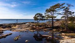 First warm days (Jukka Sundberg) Tags: meri spring luonto landscape naturesea metsä finland maisema porkkala seascape kevät kirkkonummi