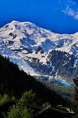 Mont Blanc and the Bossons glacier. (Fr Paul Hackett) Tags: chamonix sunshine landscape conifers trees mountain glacier sky cloud