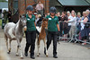 Inca Dove and Phoenix on Parade II (meniscuslens) Tags: horses horse hounds heroes pony foal filly crowd rescue charity trust event buckinghamshire aylesbury high wycombe princes risborough