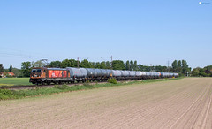 "187 536 ""HSL"" mit Kesselzug - 09.05.2018 - Holtorf (D) (Frederik L.) Tags: db bahn zug cargo eisenbahn hsl lok lokomotive baureihe 187 bahnhof nienburg weser sommer güterzug privatbahn"