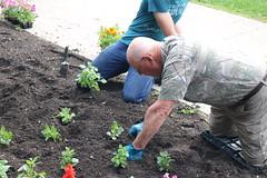 WCSA Garden Planting 2018 (University of Minnesota, Morris Alumni Association) Tags: wcsa alumni wcsagarden garden gardenplanting