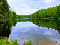 The Beauty of nature (mariaståhlmäkelä) Tags: skåneleden throughherlens