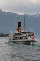 Dampfschiff DS Italie ( Inbetriebsetzung 1908 - Schaufelrad - Dieselelektroantrieb - Länge 66 m - 560 Personen - CGN Compagnie Générale de Navigation sur le lac Léman ) auf dem Genfersee - Lac Léman in der Westschweiz - Suisse romande der Schweiz (chrchr_75) Tags: christoph hurni chriguhurni chriguhurnibluemailch chrchr april 2018 chrchr75 schweiz suisse switzerland svizzera suissa swiss hurni180429 genfersee lac léman dampfschiff schiff fahrgastschiff ship bateau westschweiz romande alpensee see lake sø järvi lago 湖 landschaft landscape natur nature albumgenferseelacléman wasser eau water albumdampfschiffegenfersee albumdampfschiffitalie dampfschiffitalie schaufelraddampfer salondampfer albumkursschiffegenfersee kursschiff öffentlicher verkehr personenschifffahrt schifffahrt