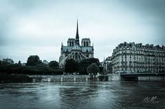 Crue de la Seine à Paris (Sebmarg) Tags: crue notredamedeparis paris seine îledefrance france fr