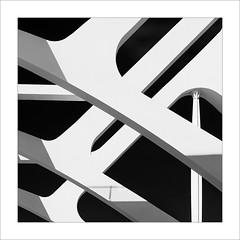 Costelles / Ribs (ximo rosell) Tags: ximorosell bn blackandwhite blancoynegro bw buildings arquitectura architecture abstract abstracció valencia composició ciudaddelasciencias calatrava cuadrado squares spain llum luz light