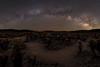 Cholla Garden Milky Arch (RyanLunaPhotography) Tags: california fuji fujifilm joshuatree nationalpark socal southerncalifornia xt2 astrophotography cactus desert landscape milkyway night nightscape ngc