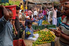 Fruit market (SaumalyaGhosh.com) Tags: labour people peopleatwork menatwork work fruits market india kolkata color colors street streetphotography