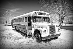 Abandoned (jmhutnik) Tags: monochrome infrared wv westvirginia lakeshawnee bus schoolbus sky trees clouds spring april abandoned lake water grass