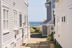 Just some of the alleys, nooks and crannies of Provincetown.  @naturalnewengland @provincetowncapecod • • • • #gorgeous #naturalnewengland #beautifulmassachusetts #capecod #explore #touristattractions #visit #massachusetts #alleyways #provincetown #warm # (samtennant1996) Tags: naturalnewengland quaint seasons explore happy capecod beautifulmassachusetts spring adventure touristattractions alleyways nikond5100 warm provincetown ocean gorgeous massachusetts visit bay vscox photography fun hobby