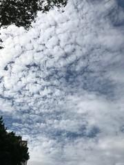20180507 sky (光輝蘇) Tags: sky20180507 morning kk