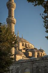 "The Blue Mosque (rogo design) Tags: sultanahmetcamiiinturkish sultan ahmet sultanahmet türkiye mosque ""thebluemosque"" ngc istambul istanbul estambul architecture city ciudad cielo arbol trees"