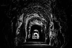Tunnel love (Will Pursell) Tags: pnwonderland explorebc cascadiaexplored pnwlife hellobc beautifulbc vancouverisawesome northwest