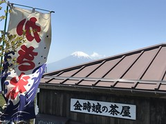 Mt.Kintoki Climbing (Phreddie) Tags: mountain kintoki climb nature view relax goldenweek hakone japan