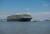 Ever Golden_DVL5071 (larry_antwerp) Tags: evergolden evergreen container 9811012 ship schip vessel schelde scheldt port haven antwerpen antwerp antwerptowage