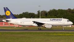 Airbus A320-211 D-AIQA Lufthansa (William Musculus) Tags: frankfurt am main airport frankfurtmain flughafen fraport eddf fra spotting daiqa lufthansa airbus a320211 a320200 william musculus