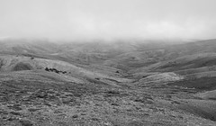 Step into another world (KOSTAS PILOT) Tags: panahaikomountain panahaiko peloponese achaia fog landscape clouds blackandwhite scenic surface kostaspilot sony sonyhx60 nature photography peak summit monochrome greece mystic ελλάδα πελοπόννησοσ αχαιασ παναχαικο κορυφή φύση τοπιο μονοχρωμο ασπρόμαυρη ομίχλη συννεφα hiking nube view mystical outdoor
